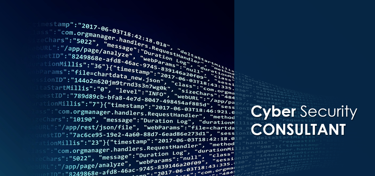 cybersecurity consultant 1
